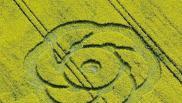 2005年5月01日英国Alton Barnes Wiltshire麦田怪圈