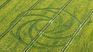 2008年4月19日英国Waden Hill Wiltshire麦田怪圈